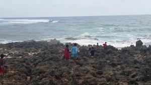 Anak-anak karang 1